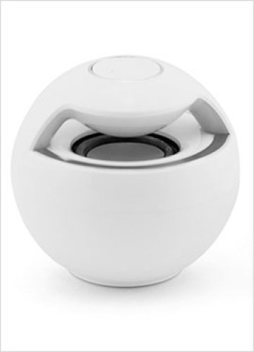 Speaker-B12